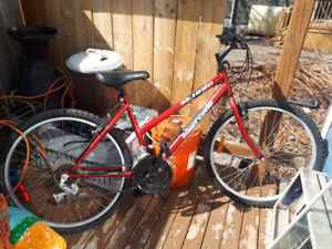 SC 1800 Supercycle 18 speed