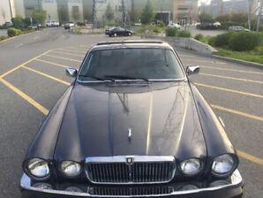 1988 Jaguar XJ V12