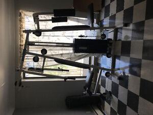 Workout machine Windsor Region Ontario image 1