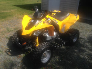 CanAm 250DS