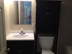 1 Bedroom with lots of storage in South West London London Ontario image 5