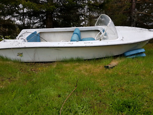 Chestnut boat for sale