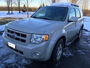 2008 Ford Escape Limited (the Luxury model)