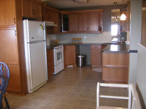 ONE Bedroom EXECUTIVE SUITE for RENT