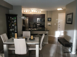 Fully Furnished Condo, 1 Bedroom + Den in SW Edmonton with A/C a