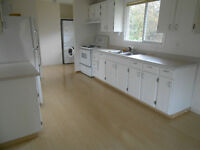 3 BED 1 BATH MAIN FLOOR OF HOUSE- GREAT LOCATION- UTILS INCLUDED