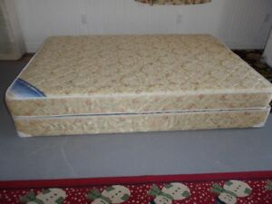 Double mattress   and Box Spring Set $135