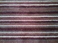 Brand New Carpet from Carpetright