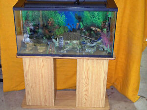 Aquarium and Stand for sale