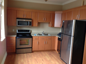 Two Bedroom Apartment For Rent - Downtown Kingston