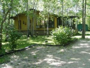 Charming Hillside Cabin For Sale
