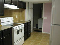 Looking to rent out one Bedroom in Bridlewood