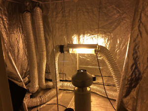 Hydroponic grow room for sale