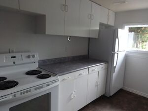 Newly Renovated Basement apartment in Bradford