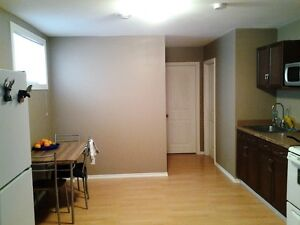 One bedroom suite for a short term rental from 1st January 2017 Regina Regina Area image 3