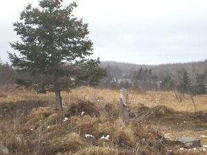 Cabin Country - Second Pond Rd - Bay Roberts - MLS 1132824 St. John's Newfoundland image 1