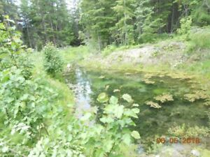 Slocan Valley: acreages for sale Financing available.