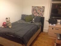 Lovely large single room to rent, excellent location, great housemates