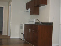 Upper Level Suite is for rent in upper college height area