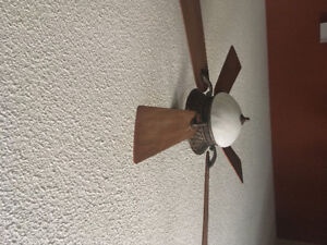 Ceiling fan, looks great and is quiet as a mouse!
