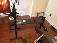 Workout Bench and weights.