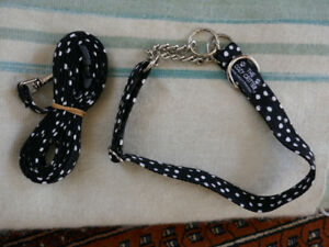New w/o tags dog collar and matching lead