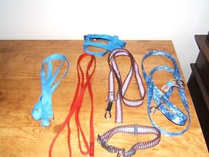 DOG LEASHES, COLLARS, DISHES