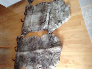 Peau de mouton véritable Saguenay Saguenay-Lac-Saint-Jean image 2