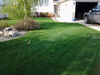 Navarros Mowing and Lawn Maintenance