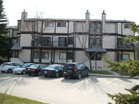 Furnished 2 BR Townhouse Condo In Suit Laundry close to U of M