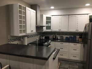 High end brand new suite for rent
