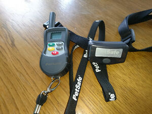 Petsafe training collar