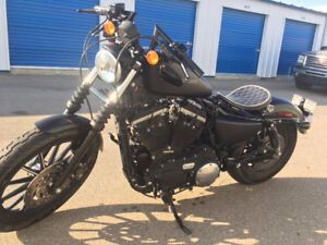 2010 Harley Davidson iron 883 Lots of extras