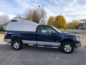 2011 Ford F-150 Camion
