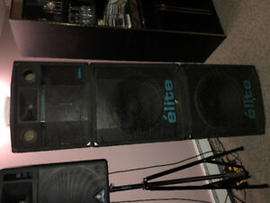 Professional PA System For Sale