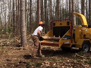7 days a wk! Clearing Excavating Brushing Chipping Roads Bush