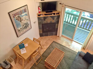 Mt. Baker Lodging - Condo #94 - KITCHENETTE, REC AMEN, SLEEPS-6!