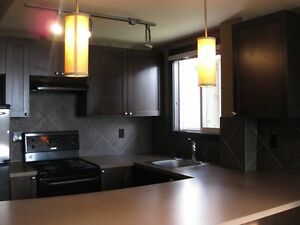 Renovated 1 bedroom condo in Beltline
