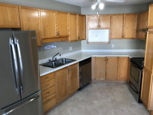 Spacious Townhouse in Millwoods