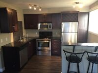 1 bedroom condo 17th ave sw for rent 1100