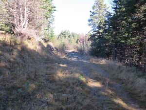 For sale 1.84 acres of land in lovely in Chapels Cove, NL St. John's Newfoundland image 6