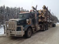 Log Truck Drivers Wanted
