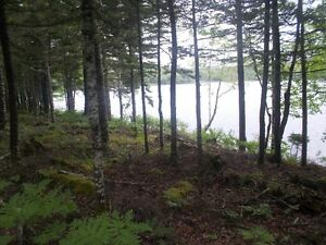 4 Acre Lakefront lot