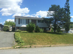 $169,900? That's it? It's a great house in Cole Harbour!