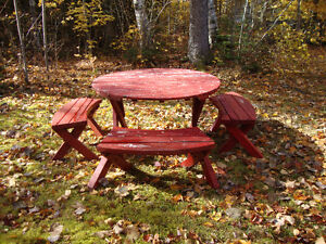 Table de picnic et 2 bancs