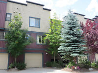 2 bdrm townhouse in Pemberton, BC