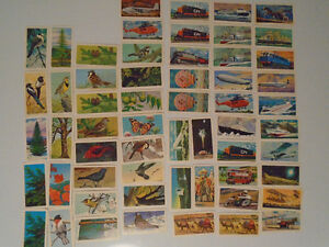 58 BROOKE BOND RED ROSE'S CARDS