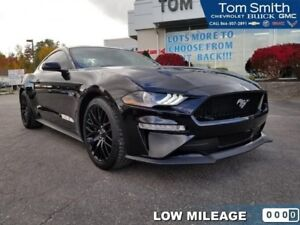2018 Ford Mustang GT Fastback  - One owner! - Low Mileage!