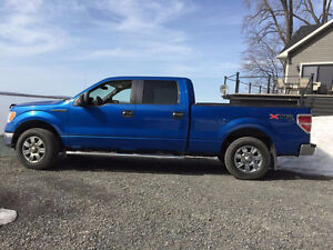 2010 Ford F-150 Camionnette