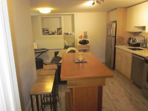 Bright Renovated 3 Bedroom Basement with Dishwasher!